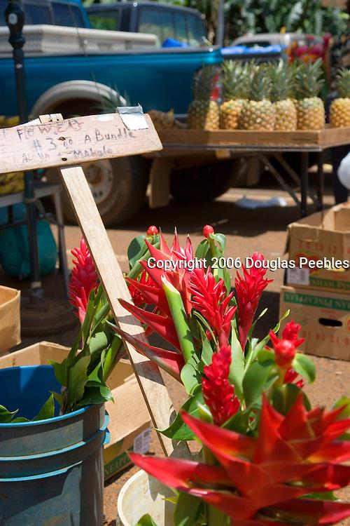 Red Ginger, Kaloa Framers Market, Kauai, Hawaii