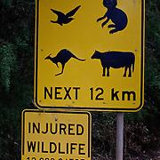 Famous injured wildlife sign with Koalas and Kangooroos.