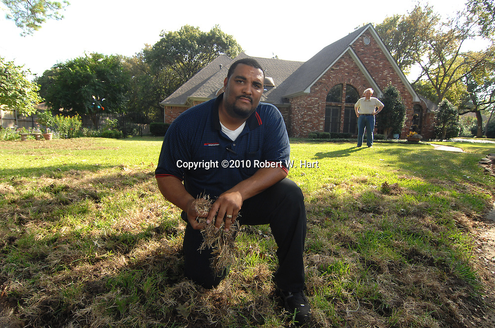 Irving resident, Kevin Reynolds, kneels in his front yard at on Lookout Circle in south Irving, Texas, on October 21, 2010 where feral hogs destroyed his lawn earlier this week. His friend and neighbor, Fred La Vail, at right, had his law destroyed as well.