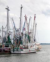 Shrimp Boats, Shem Creek, Mount Pleasant, South Carolina  photo by Catherine Brown