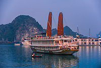 Tour ships with their junk sails up, Halong Bay, North Vietnam. The bay features 3,000  limestone and dolomite karsts and islets in various shapes and sizes sprinkled over 1,500 square kilometers. It offers a wonderland of karst topography. It is a UNESCO World Heritage Site.
