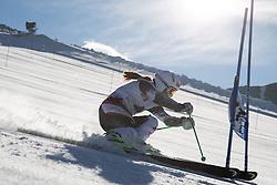 07.10.2014, Moelltaler Gletscher, Flattach, AUT, OeSV Medientag, im Bild Elisabeth Goergl (AUT) // Elisabeth Goergl of Austria in action during the media day of Austria Ski Federation OSV at Moelltaler glacier in Flattach, Austria on 2014/10/07. EXPA Pictures © 2014, PhotoCredit: EXPA/ Johann Groder