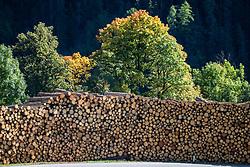 THEMENBILD - Enorm große Windwurfflächen erinnern in Osttirol an das Sturmtief Vaia, das Ende Oktober 2018 Teile des Bezirkes heimsuchte. Besonders stark in Mitleidenschaft gezogen wurden damals das Kalsertal mit 425 Hektar Waldfläche. Hier im Bild Baumstämme auf einem Holzlagerplatz in Oberpeischlach. Aufgenommen am Donnerstag 3. Oktober 2019 in Kals am Grossglockner // Enormously large windthrow areas in East Tyrol are reminiscent of the stormfront Vaia, which struck parts of the district at the end of October 2018. At that time the Kalsertal with 425 hectares of woodland was particularly badly affected. Here in the picture tree trunks on a wood storage area in Oberpeischlach. Taken on Thursday, October 3, 2019 in Kals am Grossglockner. EXPA Pictures © 2019, PhotoCredit: EXPA/ Johann Groder