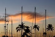 A colorful cloud at sunset silhouettes boat masts at the Ala Wai Boat Harbor in Waikiki.