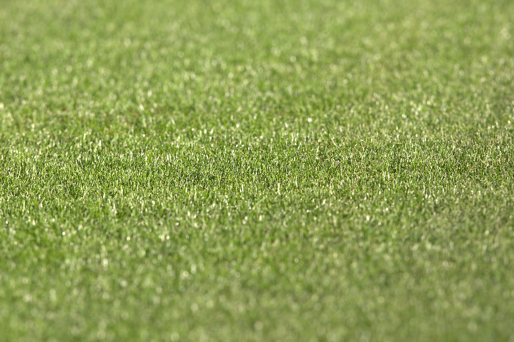 Fussball: International Friendly, 125 years, Hamburger SV - FC Barcelona 1:2, Hamburg, 24.07.2012<br /> Illustration, Field, green, gras<br /> © Torsten Helmke