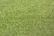 Fussball: International Friendly, 125 years, Hamburger SV - FC Barcelona 1:2, Hamburg, 24.07.2012<br /> Illustration, Field, green, gras<br /> © Torsten Helmke