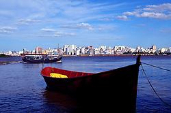 Cidade de Porto Alegre e seu porto visto a partir da Ilha da Pintada. FOTO: Alfonso Abraham/Preview.com