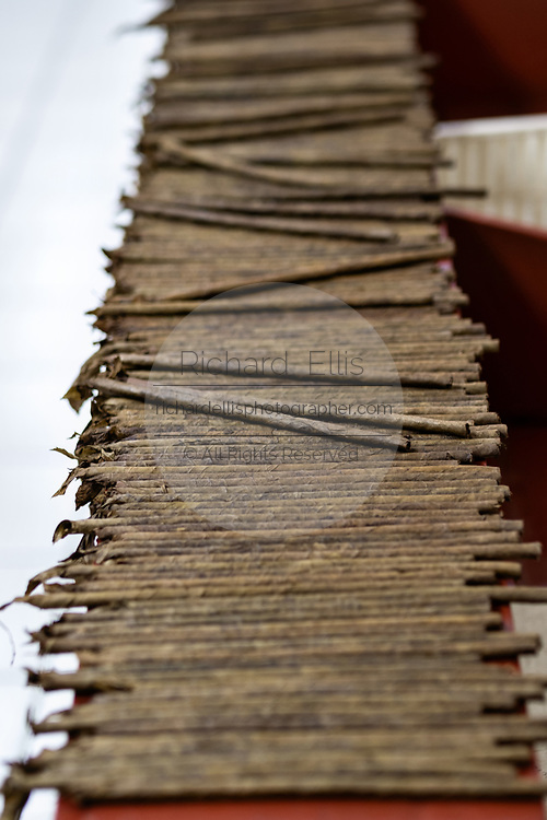 A stack of rolled cigars wait to be put into a wooden press at the Santa Clara cigar factory in San Andres Tuxtlas, Veracruz, Mexico. The factory follows traditional hand rolling using the same process since 1967 and is considered by aficionados as some of the finest cigars in the world.