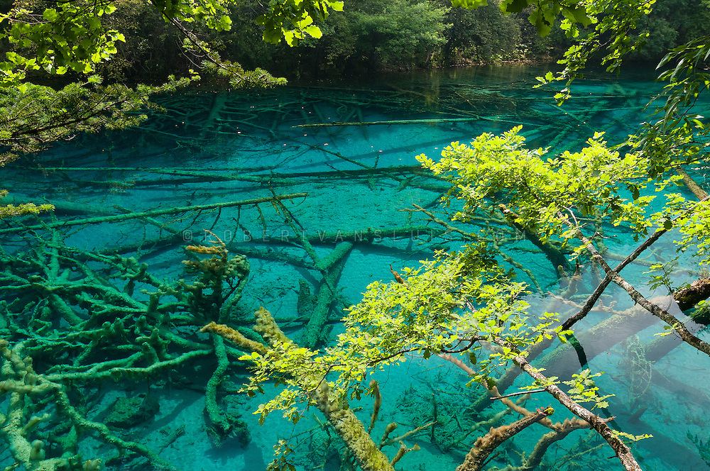 Five Flower Lake, Jiuzhaigou National Park, Sichuan, China