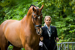 Meulendijks Anne, NED, MDH Avanti<br /> EC Rotterdam 2019<br /> © Hippo Foto - Sharon Vandeput<br /> 18/08/19
