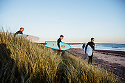 Father and sons holding surfboards walking down through the grassy sand dunes onto the beach at L'Etacq, St Ouen's Bay, Jersey, raedy for a surf at sunset