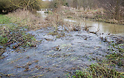 River Deben bursting its banks and flowing overland over levee onto flood plain, near Whitebridge weir, Campse Ashe, Suffolk, England late December 2012.
