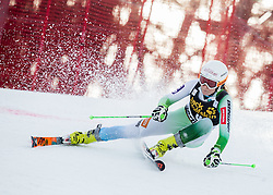 Ana Drev (SLO) competes during 7th Ladies' Giant slalom at 52nd Golden Fox - Maribor of Audi FIS Ski World Cup 2015/16, on January 30, 2016 in Pohorje, Maribor, Slovenia. Photo by Vid Ponikvar / Sportida