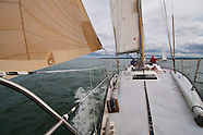 Plymouth Inner Harbor Race