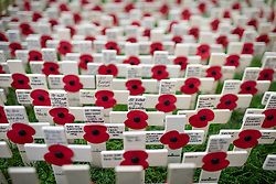 © Licensed to London News Pictures. 05/11/2018. London, UK. Wooden crosses and messages are seen as part of the Field of Remembrance at Westminster Abbey, ahead of Armistice day. Traditionally, the poppy is used to commemorate military personnel who have died in World War One. Photo credit : Tom Nicholson/LNP
