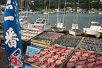 Inatori Fishing Port, Izu - Fresh fish is an important form of food for the Japanese, who consume it nearly every day. Izu supplies much of the fresh fish and seafood for Shizuoka prefecture.