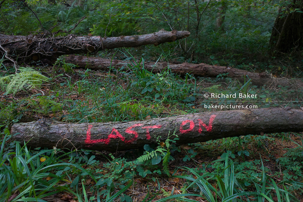 The words Last On(e) written on a log in a north Somerset forest.