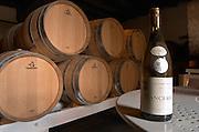 Oak barrel aging and fermentation cellar. Domaine Henry Natter, Montigny, Sancerre, Loire, France