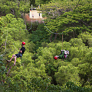 Zip lining on the island of Kauai.