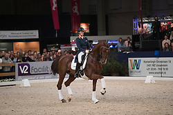 Witte Madeleine, NED, Cennin<br /> KWPN Hengstenkeuring 2017<br /> © Dirk Caremans<br /> 03/02/17
