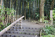 path to the bamboo forest garden at Hokokuji Temple Kamakura Japan