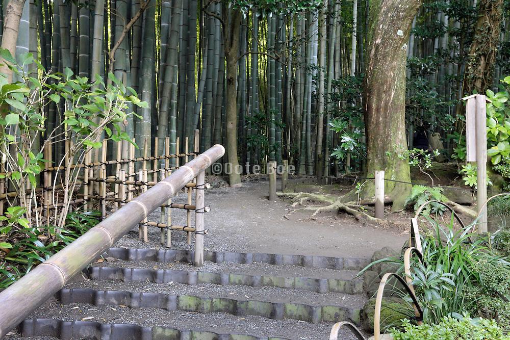 path to the bamboo forest garden at Hokokuji Temple Kamakura Japan