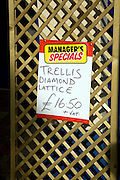 Manager's special offer Trellis Diamond Lattice on sale