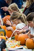 Pumpkin carving at the Martha's Vineyard Harvest fest, West Tisbury, Massachusetts, USA