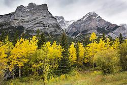 Mt. Kidd, Kananaskis Valley, Alberta, Canada