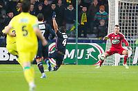 Goal Vincent BESSAT  - 20.01.2015 - Nantes / Lyon  - Coupe de France 2014/2015<br /> Photo : Vincent Michel / Icon Sport