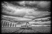 Skagit Valley, WA. / Potato Harvest - Seattle Agricultural Photographer - Photographers