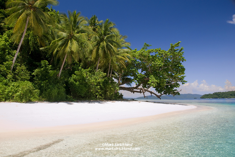One of many unspoiled beaches in Raja Ampat. Dampier Straight, Raja Ampat, West Papua, Indonesia
