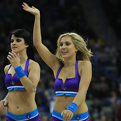 04 February 2009: A New Orleans Honeybee cheerleaders perform during a 93-107 loss by the New Orleans Hornets to the Chicago Bulls at the New Orleans Arena in New Orleans, LA.