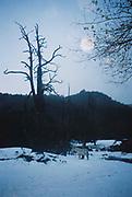 Memorias de Pucón / caballo blanco / paisaje invernal / Pucón / Chile.<br /> <br /> Edición de 25   Fine Art