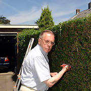 NLD/Huizen/20060712 - SGP raadslid Henk van Amstel werkend in zijn tuin
