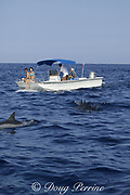 Hawaiian spinner dolphins or Gray's spinner dolphin, Stenella longirostris longirostris, and dolphin watchers on boat, Kona, Hawaii ( the Big Island ), USA ( Central Pacific Ocean )