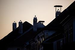 THEMENBILD - Die Freistadt Rust am Neusiedlersee wird auch Hauptstadt der Stoerche genannt. Der Weissstorch (Ciconia ciconia) zaehlt zu den groessten Landvoegeln Europas. Das Federkleid ist bis auf die schwarzen Schwungfedern rein weiss. Schnabel und Staender sind rot. Hier im Bild Dächer mit leeren Storchennester in Rust am Dienstag 15. September 2020 in Rust // The free city of Rust on Lake Neusiedl is also called the capital of the storks. The white stork (Ciconia ciconia) is one of the largest land birds in Europe. The plumage is pure white except for the black flight feathers. Beak and pennants are red. Here in the picture Roofs with empty stork nests in Rust on Tuesday 15 September 2020. EXPA Pictures © 2020, PhotoCredit: EXPA/ Johann Groder