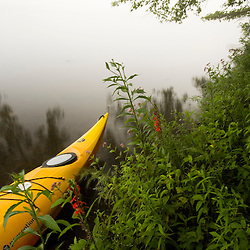 A foggy day on the Salmon River near its confluence with the Connecticut River in East Haddam, Connecticut.  Kayak.