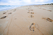 Israel, Atlit, Human footsteps in the sand