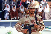 Soldier on duty in Abu Dhabi