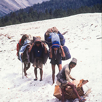 Barefoot porters adjust their loads on a snowy section of the trek around Annapurna in Nepal.