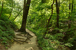 St. Louis Canyon in Starved Rock State Park in Illinois