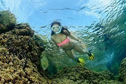 Schnorchelndes Mädchen im Meer, Snorkeling Girl in the Sea, Adria, Adriatisches Meer, Mittelmeer, Dalmatien, Kroatien, Adriatic Sea, Mediterranean Sea, Dalmatia, Croatia, MR Yes