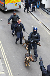 © Licensed to London News Pictures.  11/06/2013. LONDON, UK. Police dog handlers in Beak Street, where a squat was raided earlier today as part of a large policing operation related to an anti G8 protest.  Photo credit: Cliff Hide/LNP