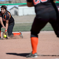 031814  Adron Gardner/Independent<br /> <br /> Gallup Bengal Shania Clark (13) digs in to scoop up a grounder from the Bloomfield Bobcats at Gallup High School in Gallup Tuesday.