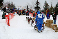 At the finish of the 2005 UP 200 Sled Dog Race, Mattson park at the Lower Harbor, downtown Marquette, Michigan