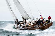Fancy sailing in the Opera House Cup regatta.