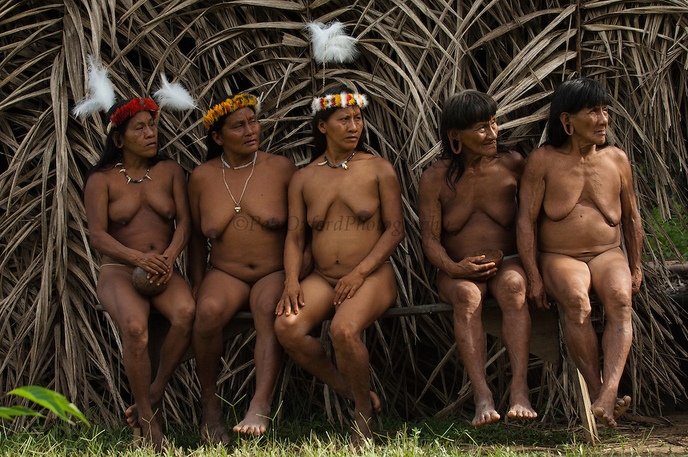 Huaorani women, Awame Gomoke & Dete Iteka, Ewa Kemperi, Meñemo Bopaga & Bebanca Wane. The crowns are topped with a Harpy Eagle feather<br /> Bameno Community. Yasuni National Park.<br /> Amazon rainforest, ECUADOR.  South America<br /> This Indian tribe were basically uncontacted until 1956 when missionaries from the Summer Institute of Linguistics made contact with them. However there are still some groups from the tribe that remain uncontacted.  They are known as the Tagaeri & Taromenane. Traditionally these Indians were very hostile and killed many people who tried to enter into their territory. Their territory is in the Yasuni National Park which is now also being exploited for oil.