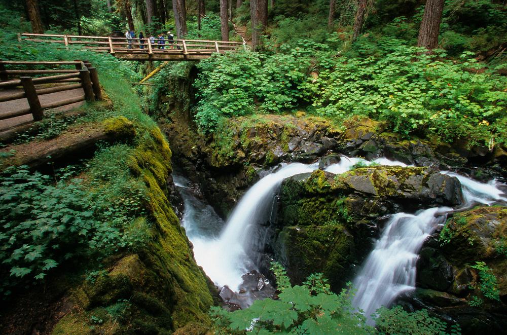 North America, USA, Washington, Olympic National Park. Sol Duc falls and hikers on bridge