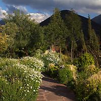 Africa, Morocco. Asni. Garden Landscpae at Richard Branson's Kasbah Tamadot Moroccan Retreat.
